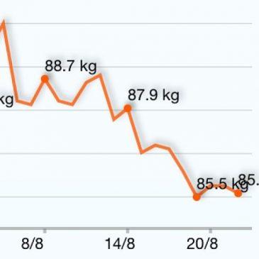 HGG – Havregrynsgröts dieten Del2 – (Dag 1 av 14)